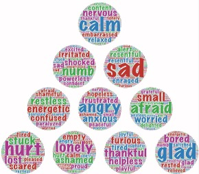 Emotions and Eating Behavior: Updates from EDRS2014