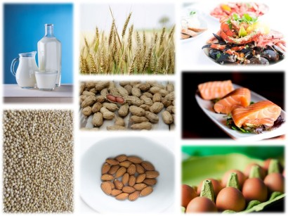 What are most food allergies caused by